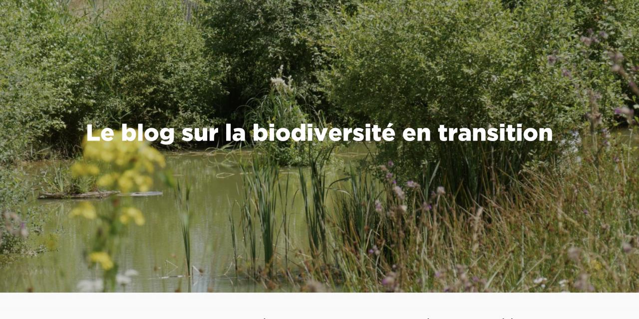 Biodivercité : le blog sur la biodiversité