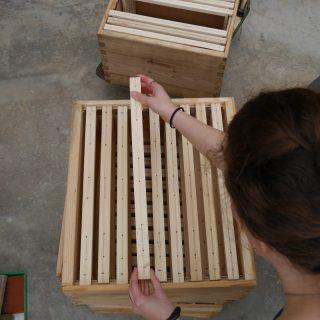16 05 26 preparation cadre cire ruche (1)
