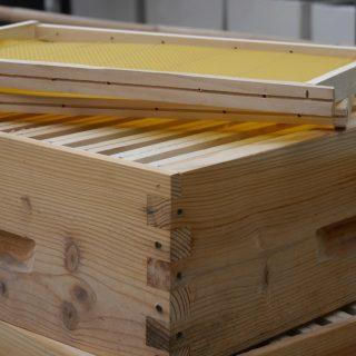 16 05 26 preparation cadre cire ruche (13)