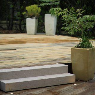 Jardin des magnolias -10