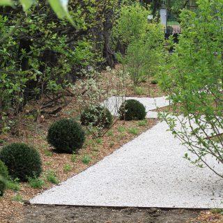 Jardin des magnolias -6