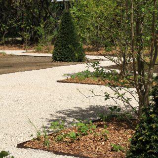 Jardin des magnolias -8