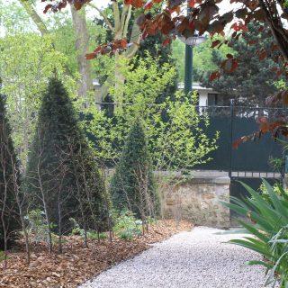 Jardin des magnolias -9