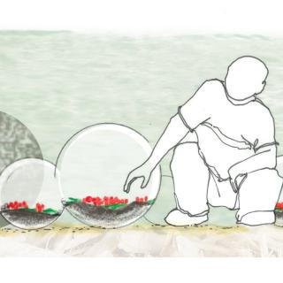 Le jardin des globles - louversey - coupe 2