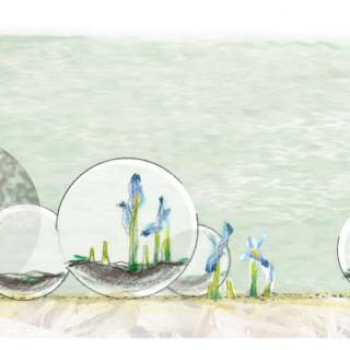 Le jardin des globes - louversey - coupe