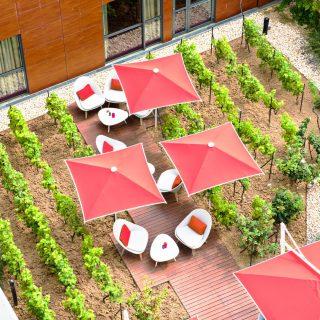 Terrasse la cour des vignes - Radisson Blue