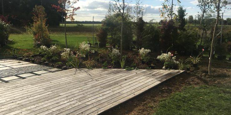 Vertdeco la pépinière - conception, aménagement et entretien de jardin 2